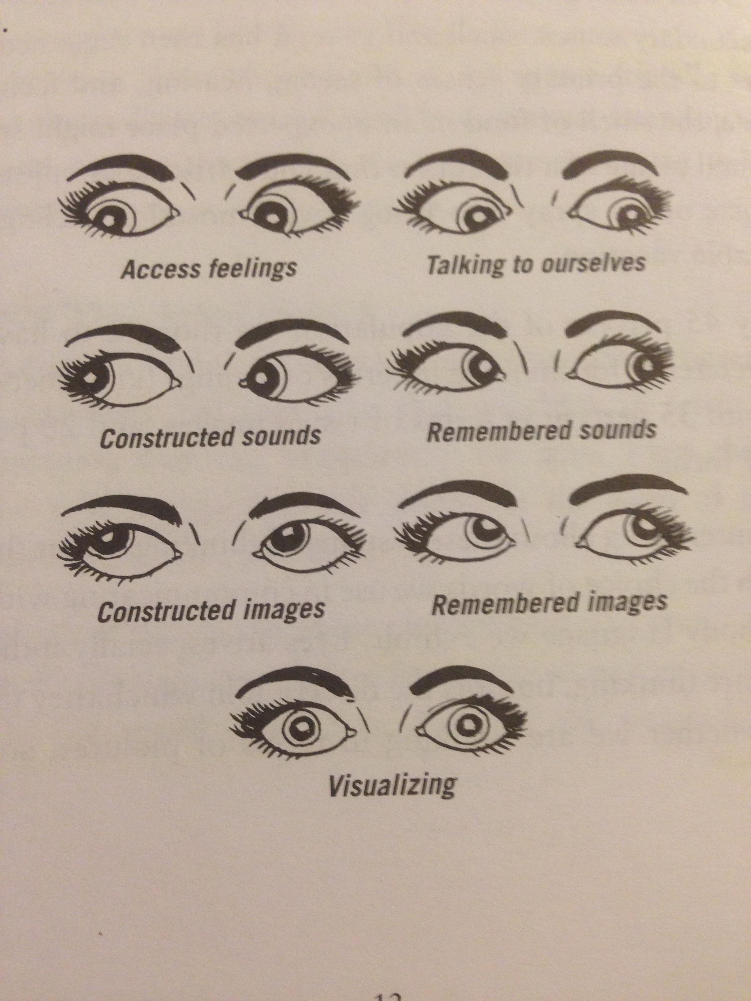 Martin Shkreli – Accurate Body Language